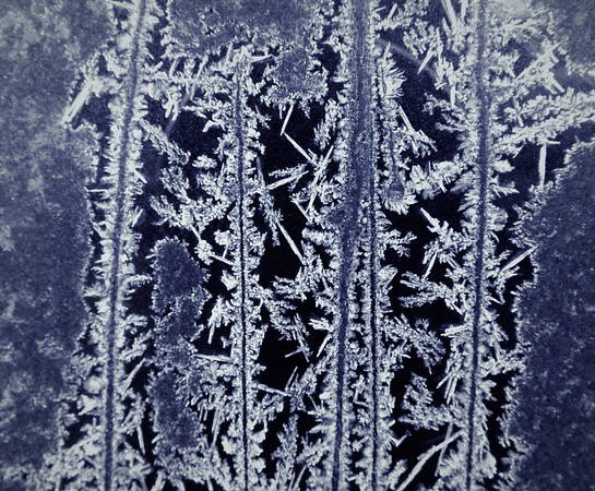 January 2017 frost on the window of my storage shed.<br /> <br /> Photographer's Name: J.R. Rosencrans<br /> Photographer's City and State: Alexandria, Ind.