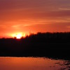 Reflecting, setting sun, on a flooded country field.<br /> <br /> Photographer's Name: Harry Van Noy<br /> Photographer's City and State: Lafayette Township, Ind.