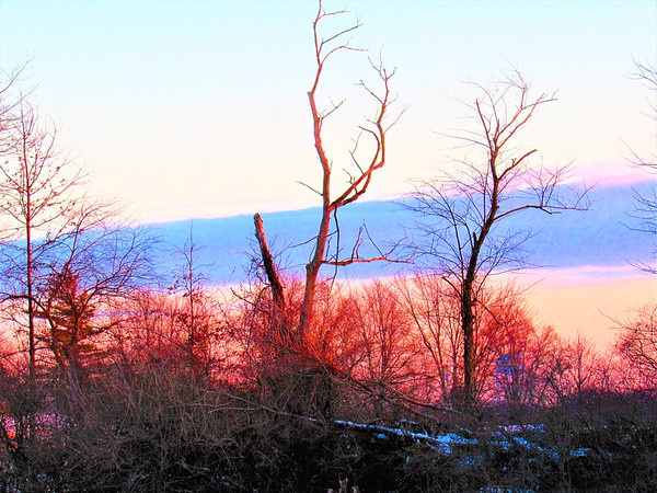 A patriotic, January winter skyline in Madison County.<br /> <br /> Photographer's Name: Harry Van Noy<br /> Photographer's City and State: Lafayette Township, Ind.