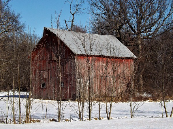 Barn storming in January in Madison County.<br /> <br /> Photographer's Name: J.R. Rosencrans<br /> Photographer's City and State: Alexandria, Ind.