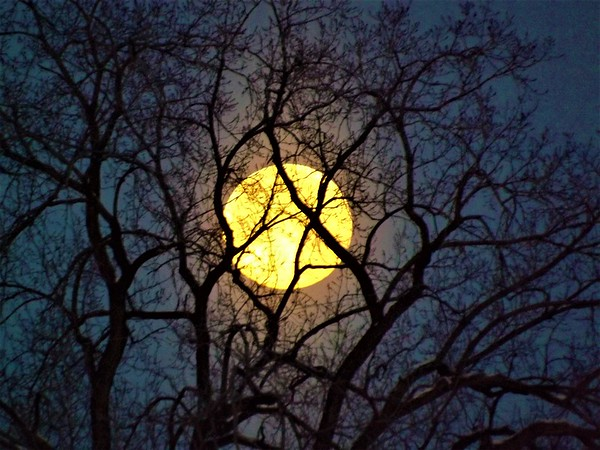 """Peek-a boo with the super moon,"" taken in Richland Township.<br /> <br /> Photographer's Name: J.R. Rosencrans<br /> Photographer's City and State: Alexandria, Ind."