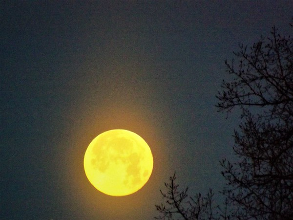 Super moon in January in Richland Township.<br /> <br /> Photographer's Name: J.R. Rosencrans<br /> Photographer's City and State: Alexandria, Ind.