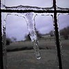 Ice storm art.<br /> <br /> Photographer's Name: J.R. Rosencrans<br /> Photographer's City and State: Alexandria, Ind.