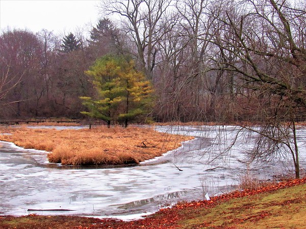A wintry scene of the Killbuck Wetlands.<br /> <br /> Photographer's Name: Harry Van Noy<br /> Photographer's City and State: Lafayette Township, Ind.