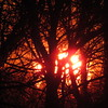 Sunset for the first day of January, 2018.<br /> <br /> Photographer's Name: Harry Van Noy<br /> Photographer's City and State: Lafayette Township, Ind.