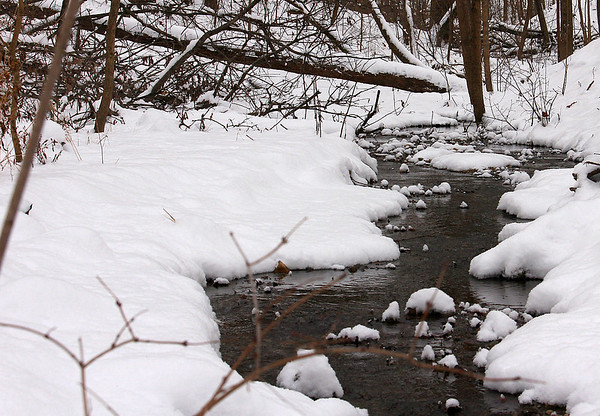 A snowy stream at Mounds Park after a recent snow.<br /> <br /> Photographer's Name: Jerry Byard<br /> Photographer's City and State: Anderson, Ind.