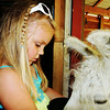 Emerson Markle from Greenwood visiting her great-grandparents' llama farm.<br /> <br /> Photographer's Name: Sharon Markle<br /> Photographer's City and State: Markleville, Ind.