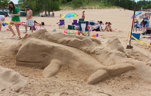 This whale was a sand sculpture created at the Indiana Dunes State Park on Saturday.<br /> <br /> Photographer's Name: Jerry Byard<br /> Photographer's City and State: Anderson, Ind.