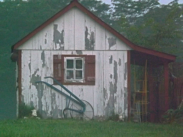 The garden shed, taken at my farm in Richland Township.<br /> <br /> Photographer's Name: J.R. Rosencrans<br /> Photographer's City and State: Alexandria, Ind.