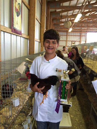 My son, Jonathan Schlabach with his Champion SCCL Bantam at the Madison County 4-H Fair.<br /> <br /> Photographer's Name: Kendra Schlabach<br /> Photographer's City and State: Anderson, Ind.