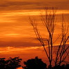 A Sunday night sunset.<br /> <br /> Photographer's Name: Harry Van Noy<br /> Photographer's City and State: Lafayette Township, Ind.