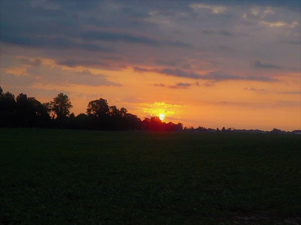 Sunrise at the farm in Richland Township.<br /> <br /> Photographer's Name: J.R. Rosencrans<br /> Photographer's City and State: Alexandria, Ind.