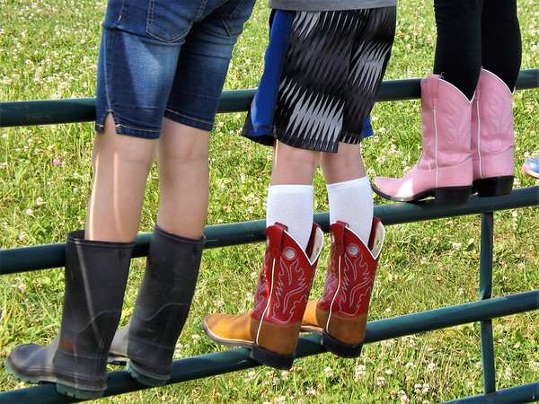 """"""" Cowboy boots on the bar"""" at my farm in Richland Township.<br /> <br /> Photographer's Name: J.R. Rosencrans<br /> Photographer's City and State: Alexandria, Ind."""