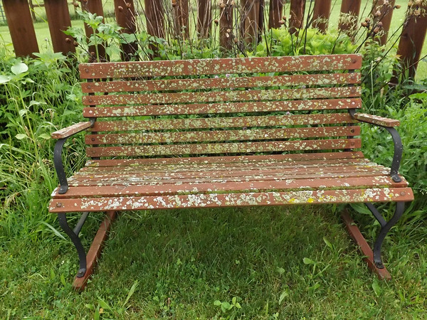 """""""Wet Spring"""" (backyard bench moss).<br /> <br /> Photographer's Name: J.R. Rosencrans<br /> Photographer's City and State: Alexandria, Ind."""