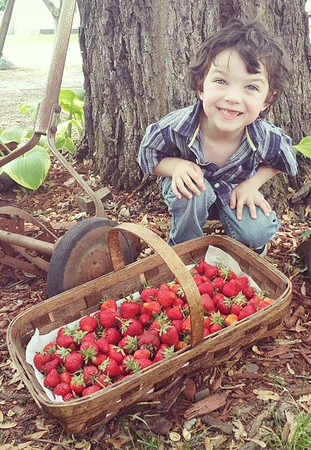 My nephew, Carson Passmore, with the first strawberries he's picked this spring.<br /> <br /> Photographer's Name: Shaley  Passmore<br /> Photographer's City and State: Anderson, Ind.