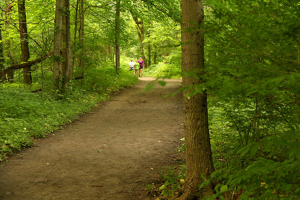 A popular hiking trail is No. 5 at Mounds Park as it winds through the forest canopy.<br /> <br /> Photographer's Name: Jerry Byard<br /> Photographer's City and State: Anderson, Ind.