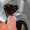 This butterfly stepped from the wheel of my truck onto my finger.<br /> <br /> Photographer's Name: Jerry Byard<br /> Photographer's City and State: Anderson, Ind.