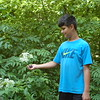 Somebody knows the best pies in Anderson start with black raspberries! My son, Jonathan Schlabach, combing the woods' edge for an Indiana delicacy!<br /> <br /> Photographer's Name: Kendra Schlabach<br /> Photographer's City and State: Anderson, Ind.