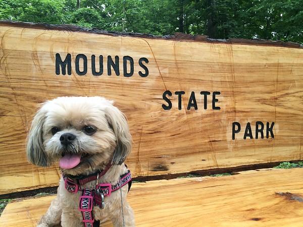 Mya Jo Hoskins enjoying a photo op at her favorite park.<br /> <br /> Photographer's Name: Niki / Jason Scott / Hoskins<br /> Photographer's City and State: Anderson, Ind.