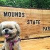 Mya Jo Hoskins enjoying a photo op at her favorite park.<br /> <br /> Photographer's Name: Niki / Jason Scott / Hoskins<br /> Photographer's City and State: Anderson, Ind.