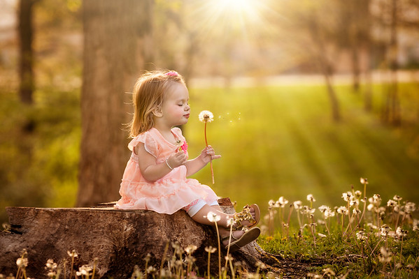 My granddaughter Nilsa Fox blowing dandelions.<br /> <br /> Photographer's Name: Terry Lynn Ayers<br /> Photographer's City and State: Anderson, Ind.