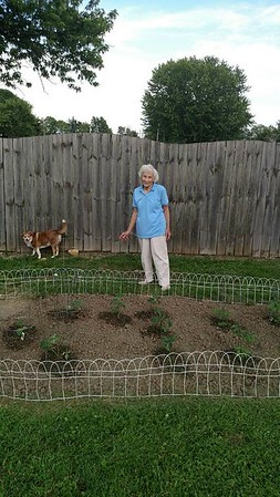 Alma York, 90 years old, only used a garden hoe to put in her garden.   Anderson Ind.<br /> <br /> Photographer's Name: J.R. Rosencrans<br /> Photographer's City and State: Alexandria, Ind.