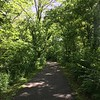 A walk around Shayside!<br /> <br /> Photographer's Name: Janet  Hart<br /> Photographer's City and State: Anderson, Ind.