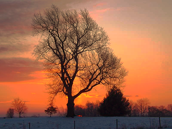 March sunrise in Richland Township.<br /> <br /> Photographer's Name: J.R. Rosencrans<br /> Photographer's City and State: Alexandria, Ind.
