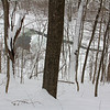 A snowy scene through the woods above White River at Mounds Park offered a picturesque photo.<br /> <br /> Photographer's Name: Jerry Byard<br /> Photographer's City and State: Anderson, Ind.