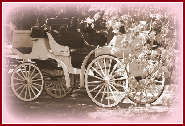 Romantic carriage.<br /> <br /> Photographer's Name: Laura Johnson<br /> Photographer's City and State: Alexandria, Ind.