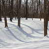Circle Mound at Mounds Park was covered with fresh fallen weekend snow.<br /> <br /> Photographer's Name: Jerry  Byard<br /> Photographer's City and State: Anderson, Ind.