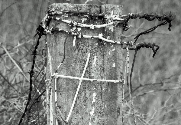 The cross and crown of thorns!<br /> <br /> Photographer's Name: Wynn Levi<br /> Photographer's City and State: Alexandria, Ind.