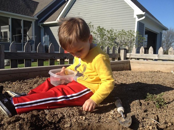 Spring time planting: Eli Coxe, grandson.<br /> <br /> Photographer's Name: J.R. Rosencrans<br /> Photographer's City and State: Alexandria, Ind.