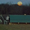 Country moonrise in Richland Township.<br /> <br /> Photographer's Name: J.R. Rosencrans<br /> Photographer's City and State: Alexandria, Ind.