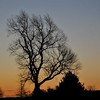 March silhouette in Richland Township.<br /> <br /> Photographer's Name: J.R. Rosencrans<br /> Photographer's City and State: Alexandria, Ind.