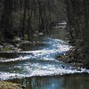 Killbuck Creek catching some sun in Richland Township.<br /> <br /> Photographer's Name: J.R. Rosencrans<br /> Photographer's City and State: Alexandria, Ind.