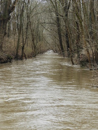 """""""Creek's Up:"""" Killbuck Creek in Richland Township.<br /> <br /> Photographer's Name: J.R. Rosencrans<br /> Photographer's City and State: Alexandria, Ind."""