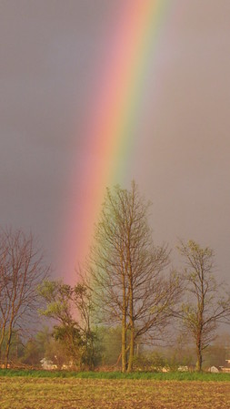 A May 1 rainbow.<br /> <br /> Photographer's Name: Harry Van Noy<br /> Photographer's City and State: Lafayette Township, Ind.