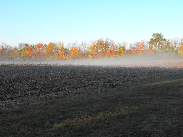 Farm fog in Richland Township.<br /> <br /> Photographer's Name: J.R. Rosencrans<br /> Photographer's City and State: Alexandria, Ind.