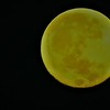 Super Moon at my farm in Richland Township.<br /> <br /> Photographer's Name: J.R. Rosencrans<br /> Photographer's City and State: Alexandria, Ind.