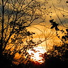 November sunset.<br /> <br /> Photographer's Name: Harry Van Noy<br /> Photographer's City and State: Lafayette Township, Ind.