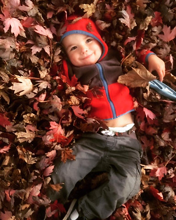 Eli Clayton, great-grandson of Robert and Mary Dean, playing in leaves.<br /> <br /> Photographer's Name: Robert Dean<br /> Photographer's City and State: Anderson, Ind.