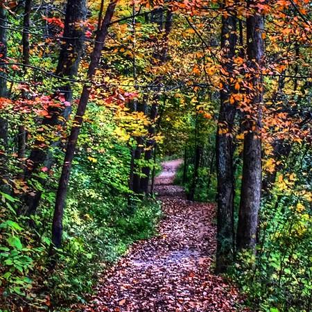 Mounds Park.<br /> <br /> Photographer's Name: Linda  Riedel Ellis<br /> Photographer's City and State: Daleville, Ind.