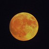 Super moon,  Nov. 14.<br /> <br /> Photographer's Name: J.R. Rosencrans<br /> Photographer's City and State: Alexandria, Ind.