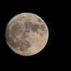 A look at the super moon on Sunday evening.<br /> <br /> Photographer's Name: Jerry Byard<br /> Photographer's City and State: Anderson, Ind.