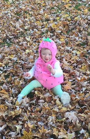 Mayah Norris, daughter of Haley Hart and Zac Norris, having fun in the leaves during Halloween.<br /> <br /> Photographer's Name: Melea Hart<br /> Photographer's City and State: Alexandria, Ind.