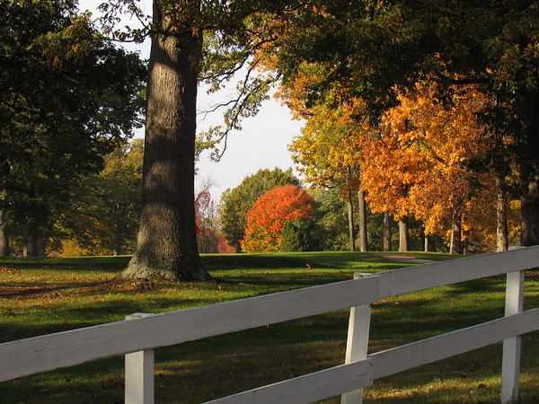Fall colors on the golf course.<br /> <br /> Photographer's Name: Harry Van Noy<br /> Photographer's City and State: Lafayette Township, Ind.