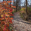 Some fall color is still hanging on along the river at Mounds Park.<br /> <br /> Photographer's Name: Jerry Byard<br /> Photographer's City and State: Anderson, Ind.