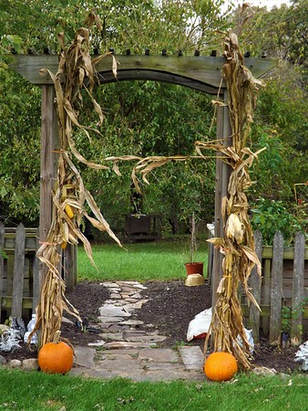 November harvest in Richland Township.<br /> <br /> Photographer's Name: J.R. Rosencrans<br /> Photographer's City and State: Alexandria, Ind.