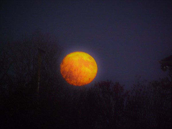 November full moon in Richland Township.<br /> <br /> Photographer's Name: J.R. Rosencrans<br /> Photographer's City and State: Alexandria, Ind.